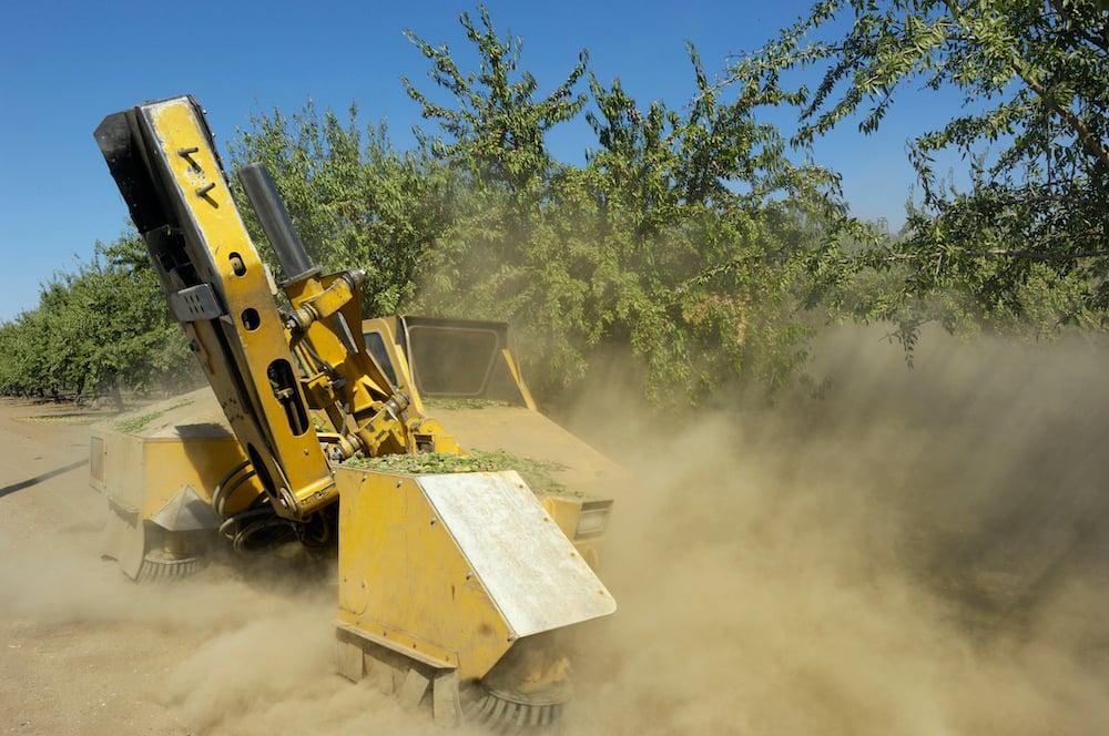 almond_harvest_dust