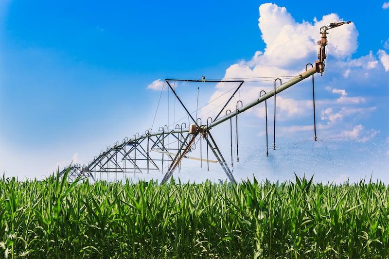 center pivot on corn