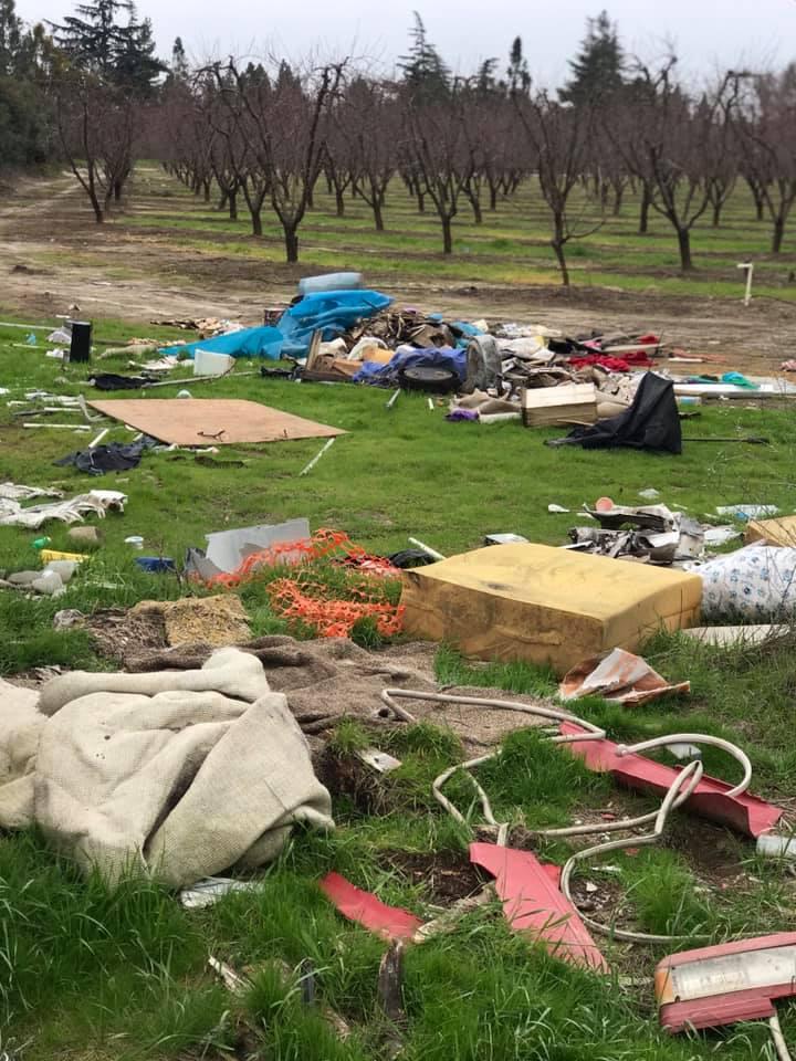 orchard_dumping_saylove