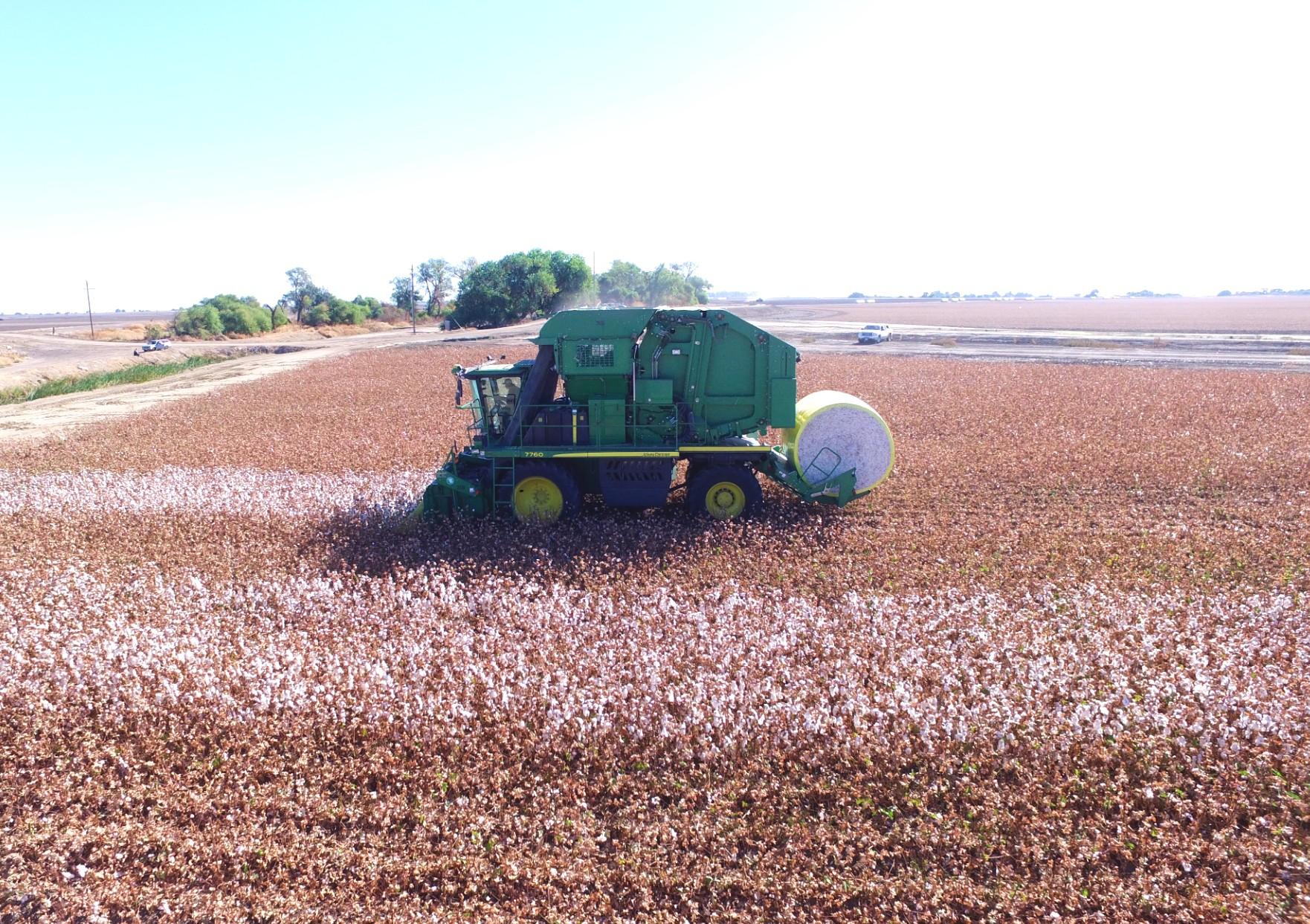 round module cotton harvester