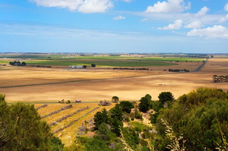 rural landscape South Australia