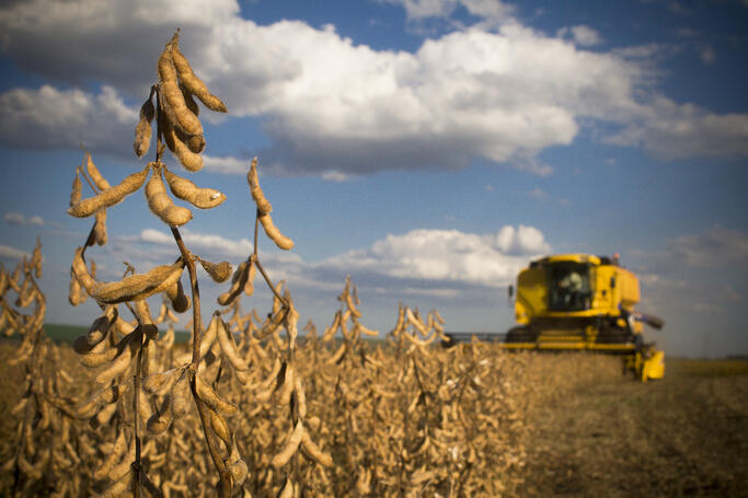 soybean_harvest