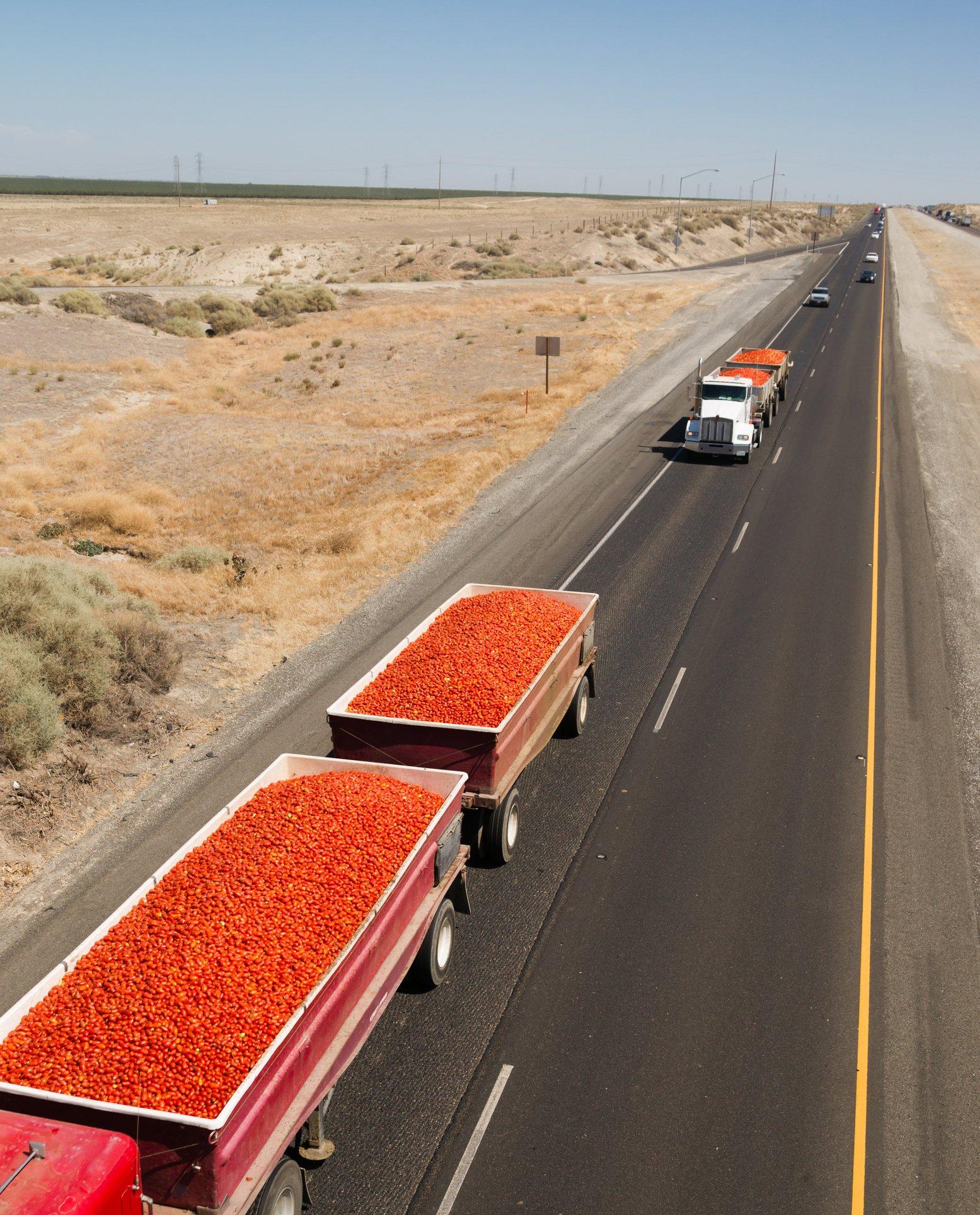 tomatoes in trucks