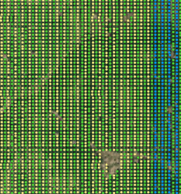 tree_count_detail