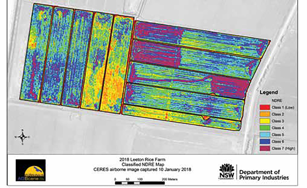 NDRE Image of a commercial rice field collected using Ceres Imaging aircraft based sensor at 0.5 m resolution.