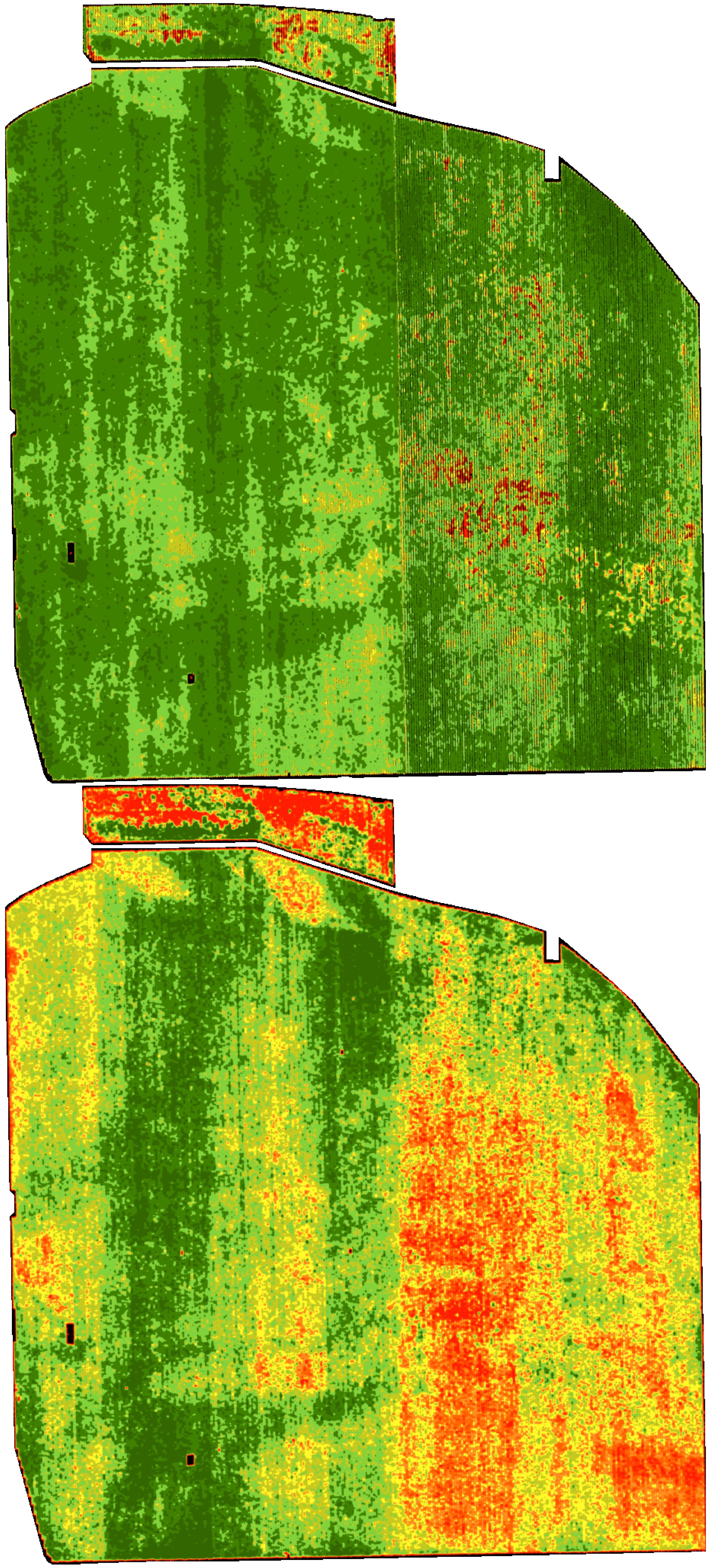 McManis-casestudy-imageryexamples-01