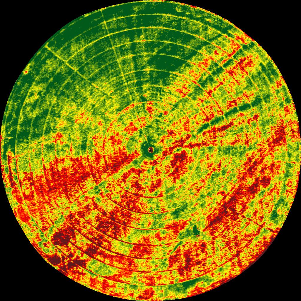 Soil patterns in NDVI