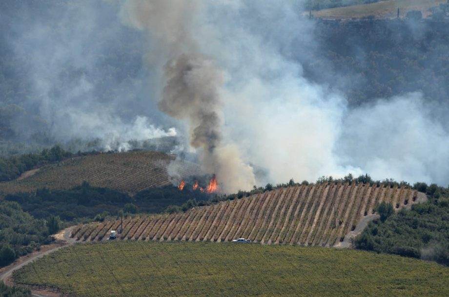 Smoke and flames are visible behind a vineyard