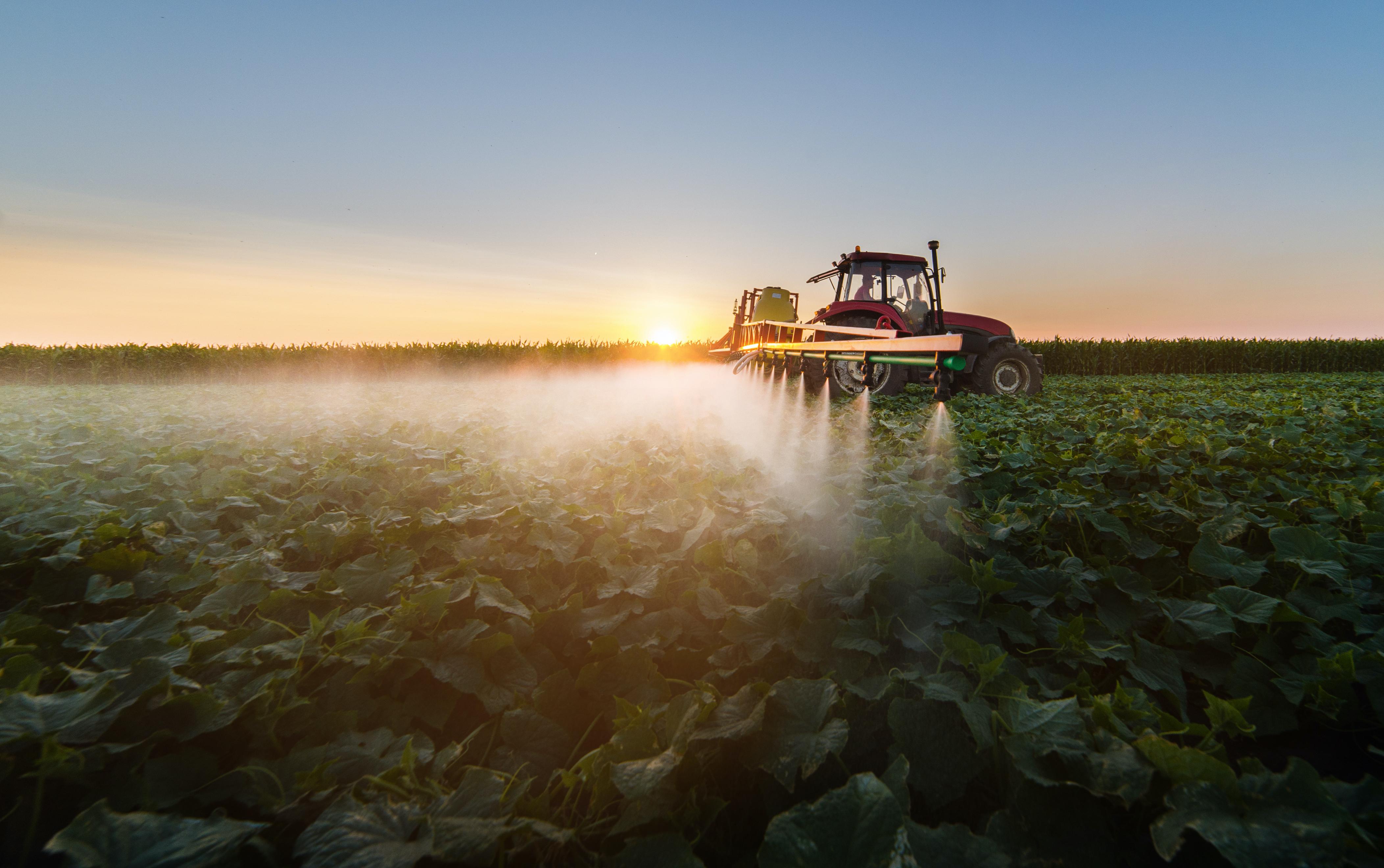 Tractor sprays a soybean field